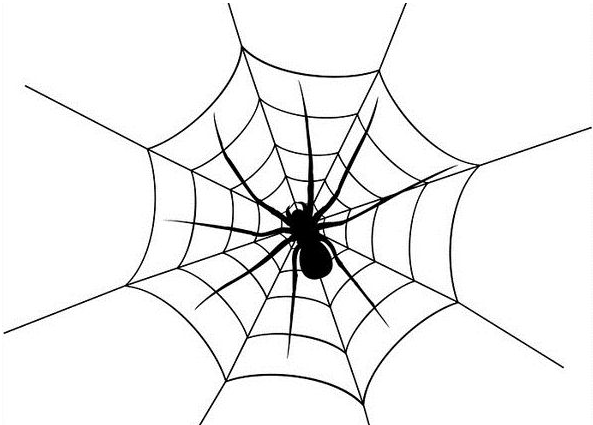 什么是蜘蛛搜索引擎,各大搜索引擎的蜘蛛介绍!